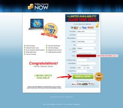 secure.onlineincnow.com Data Entry Screen