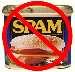 How WordPress Spam Works